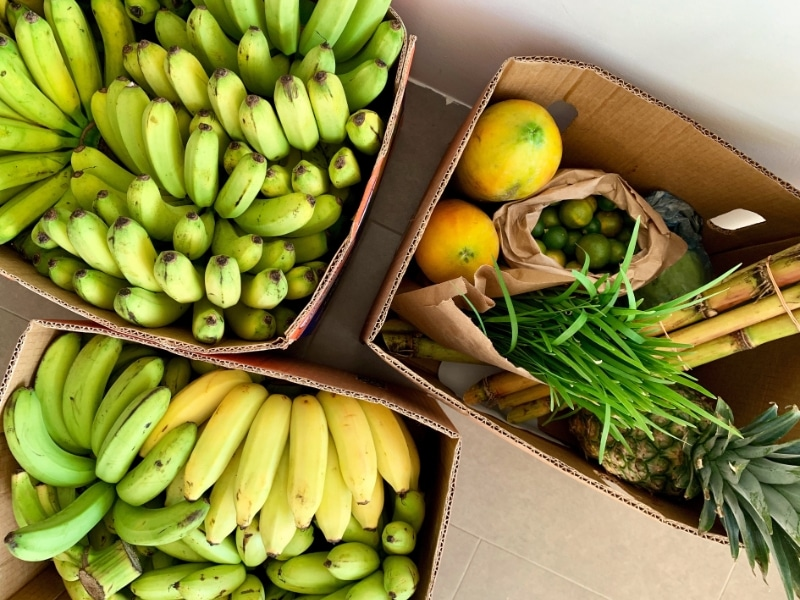 Less plastic waste_Fruits and Veggies