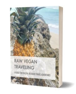 Raw Vegan Traveling Ebook Snippet